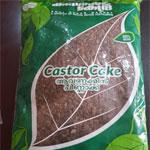 castor_cake_thumb